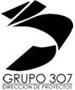 grupo307